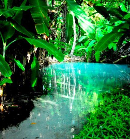 5 motivos para conhecer o Jalapão