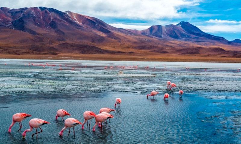 10 lugares para conhecer antes de morrer salar de Uyuni